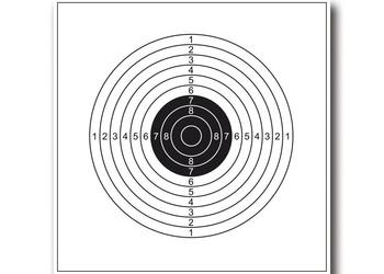 paquet de 10 cibles 14 x14 cm